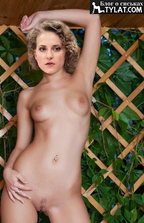 Браззерс порно актеры